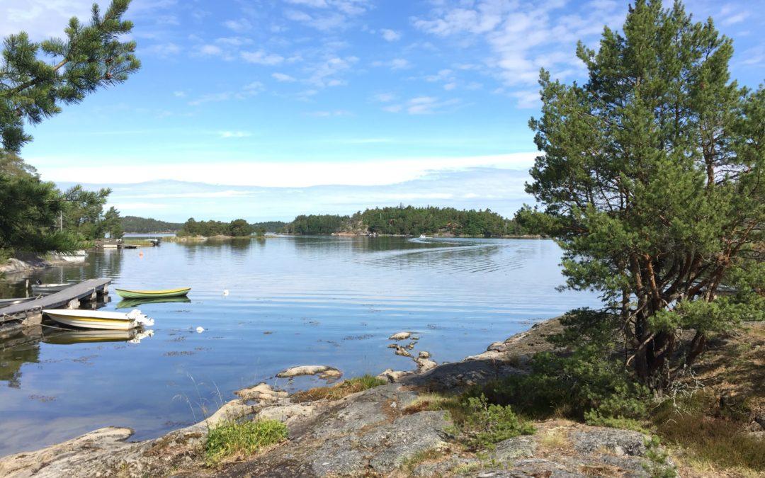 Svenska OCD-förbundet stöttar personer med ocd och närliggande diagnoser.